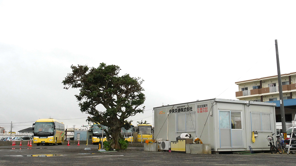 Miyako Island Sales Office